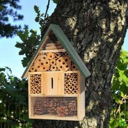Walloniebienvenue be - Hotel a insectes nature et decouverte ...